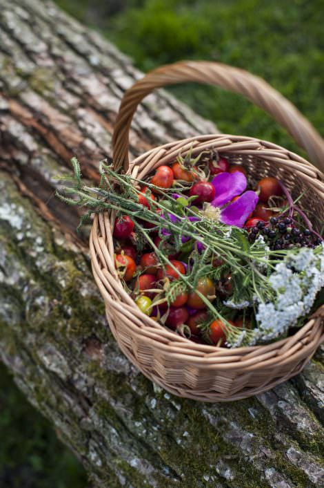 Restaurant Slettestrand serverer mad med naturens smage.