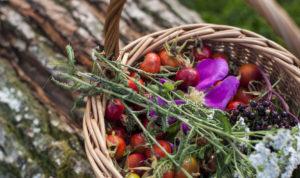 Restaurant Slettestrand serverer hjemmelavet mad af økologiske og lokale råvarer.