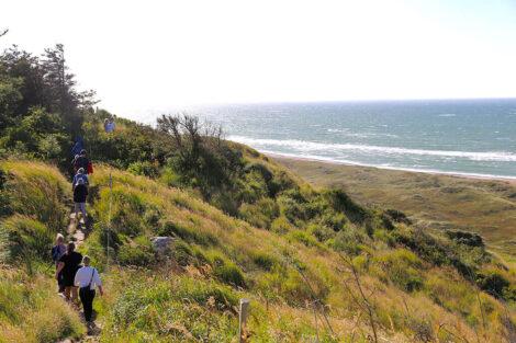 Guidet vandretur på Vestkysten   Foto: David Andreasen
